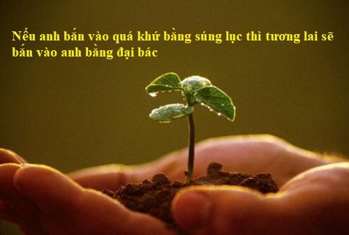 cau-noi-hay-ve-cuoc-song-tuoi-dep-jpg.7532