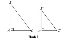 đồng dạng của tam giác vuông.PNG
