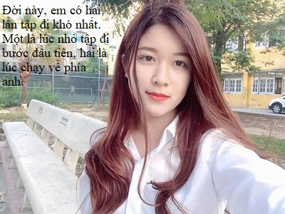meo-anh-long-ngan-jpg.7893