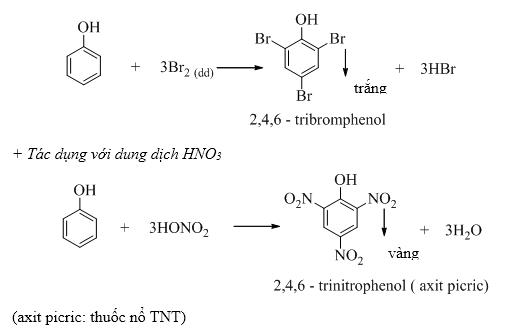phenol-png.5255